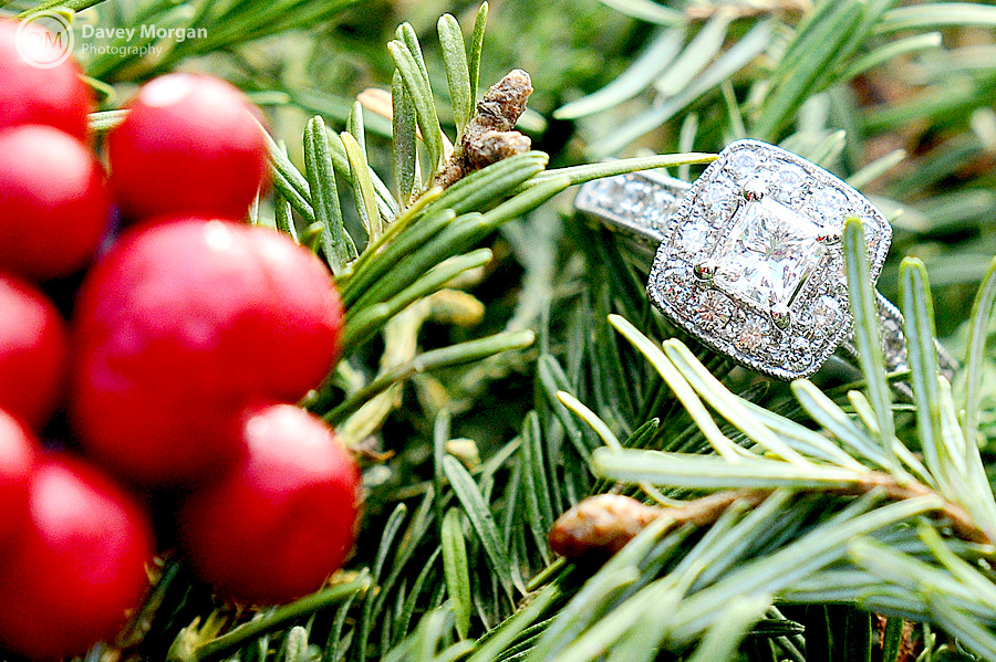 Picture of Engagement Ring Close-up | Davey Morgan Photography