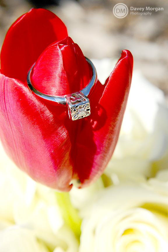 Engagement Ring on red flower, Greenville, SC | Davey Morgan Photography