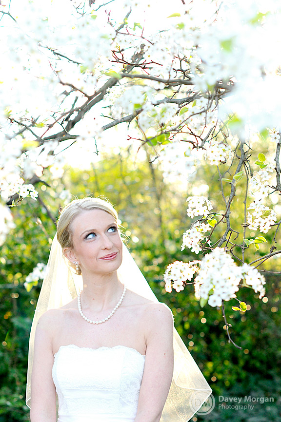 Bride in wedding dress under a tree | Davey Morgan Photography