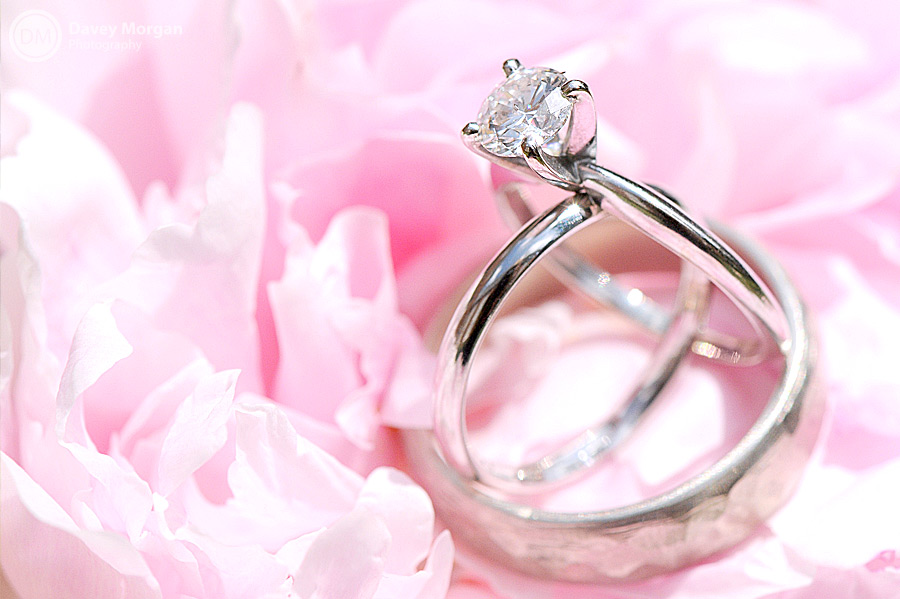 Engagement and weddings bands on flower | Davey Morgan Photography