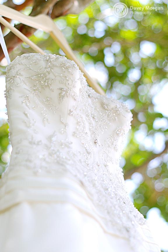 Wedding Dress hanging in a tree | Davey Morgan Photography