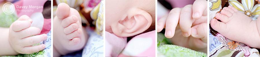 Greenville, SC Baby Collage Photographer | Davey Morgan Photography