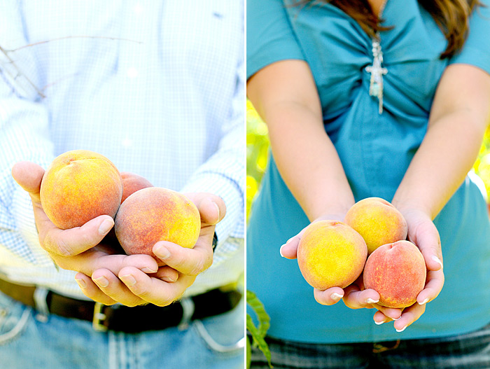 holding peaches in hands   Davey Morgan Photography