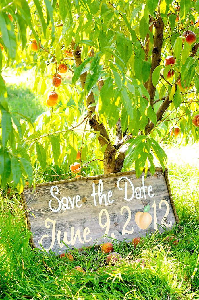 Old Wooden Save the Date Sign | Davey Morgan Photography