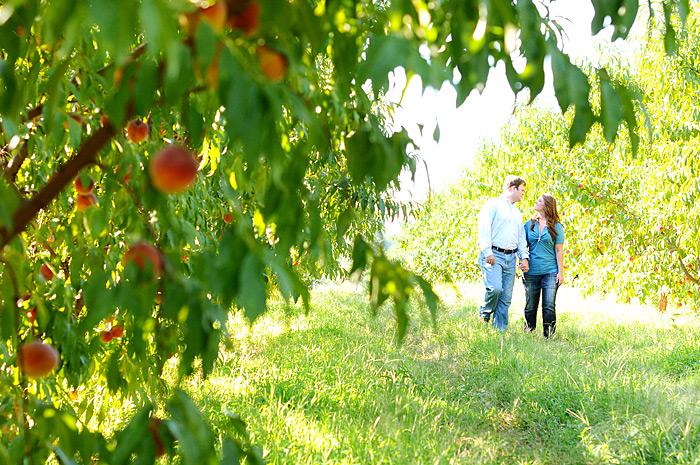 Walking on a peach farm | Davey Morgan Photography